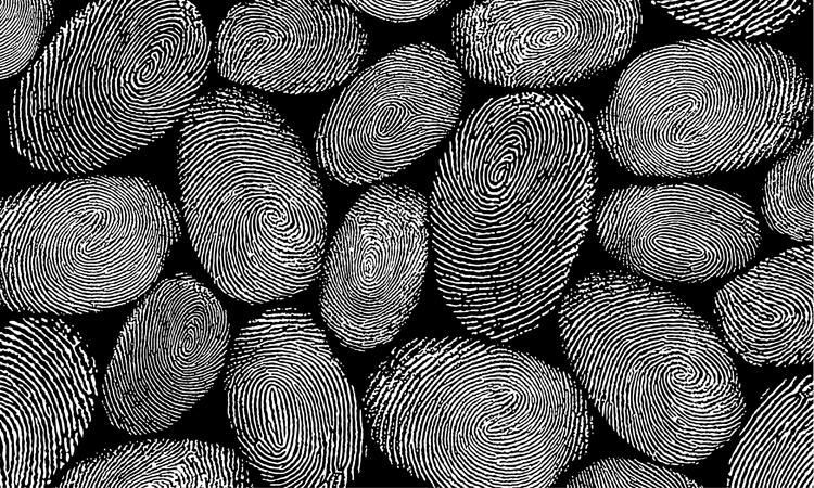 Texture, fingerprints